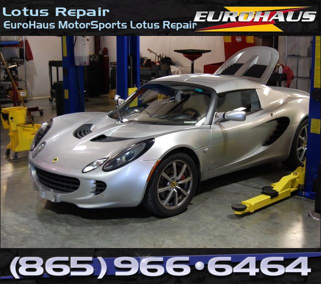 Lotus_Repair